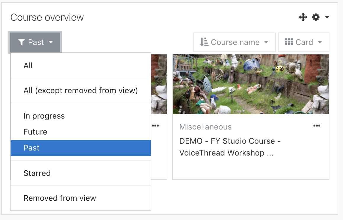 Showing the drop-down options for course view filters on the Dashboard